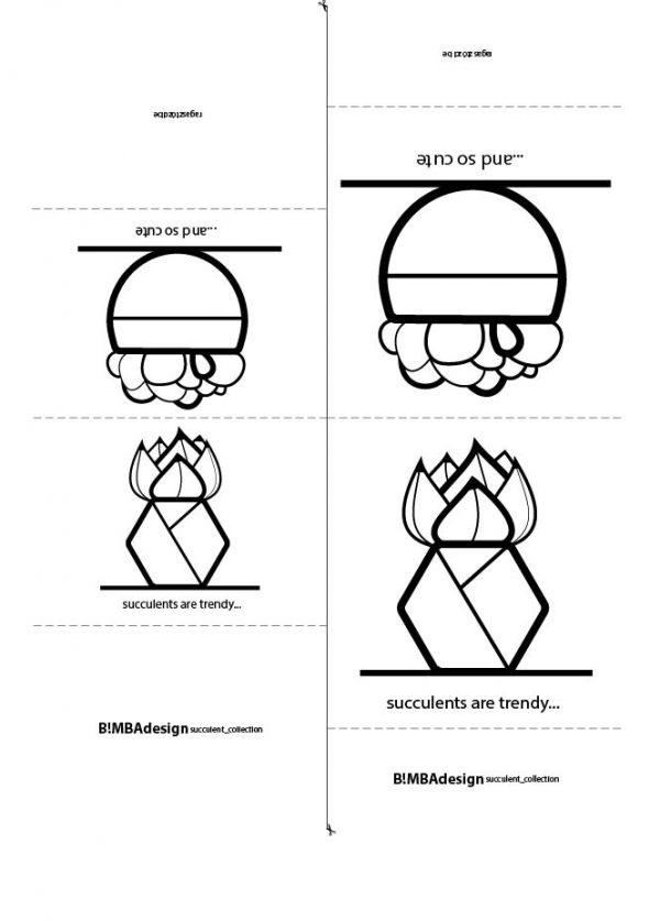 asztali_disz_papir_succulent__hexagon_rounded_a4